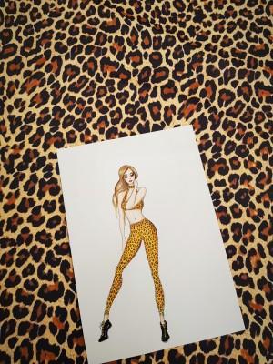 Leopard_rajz